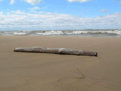 Michigan beach art.