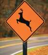 Michigan deer crossing sign.