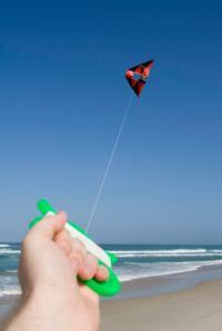 Kite on a Michigan beach.