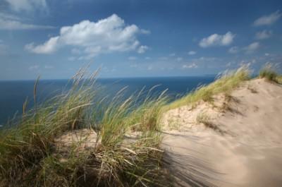 Save the Lake Michigan Dunes.