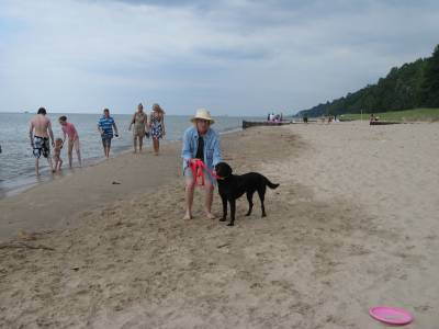 Michigan pet friendly beaches