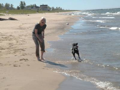 Lake Michigan pet friendly.