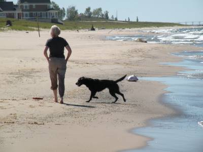 Michigan dog beach.