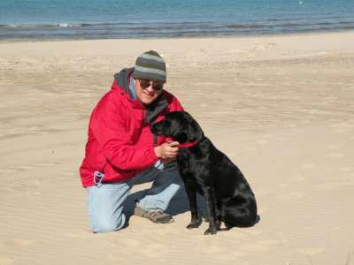 Dog beaches along Lake Michigan.